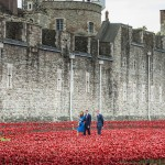 William, Catherine and Harry visit Tower of London Poppy Installation